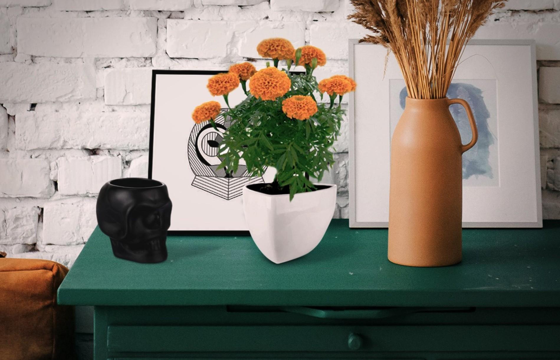 möblum-eventos-día_de_muertos-decoración-flor_cempasuchill-cráneo