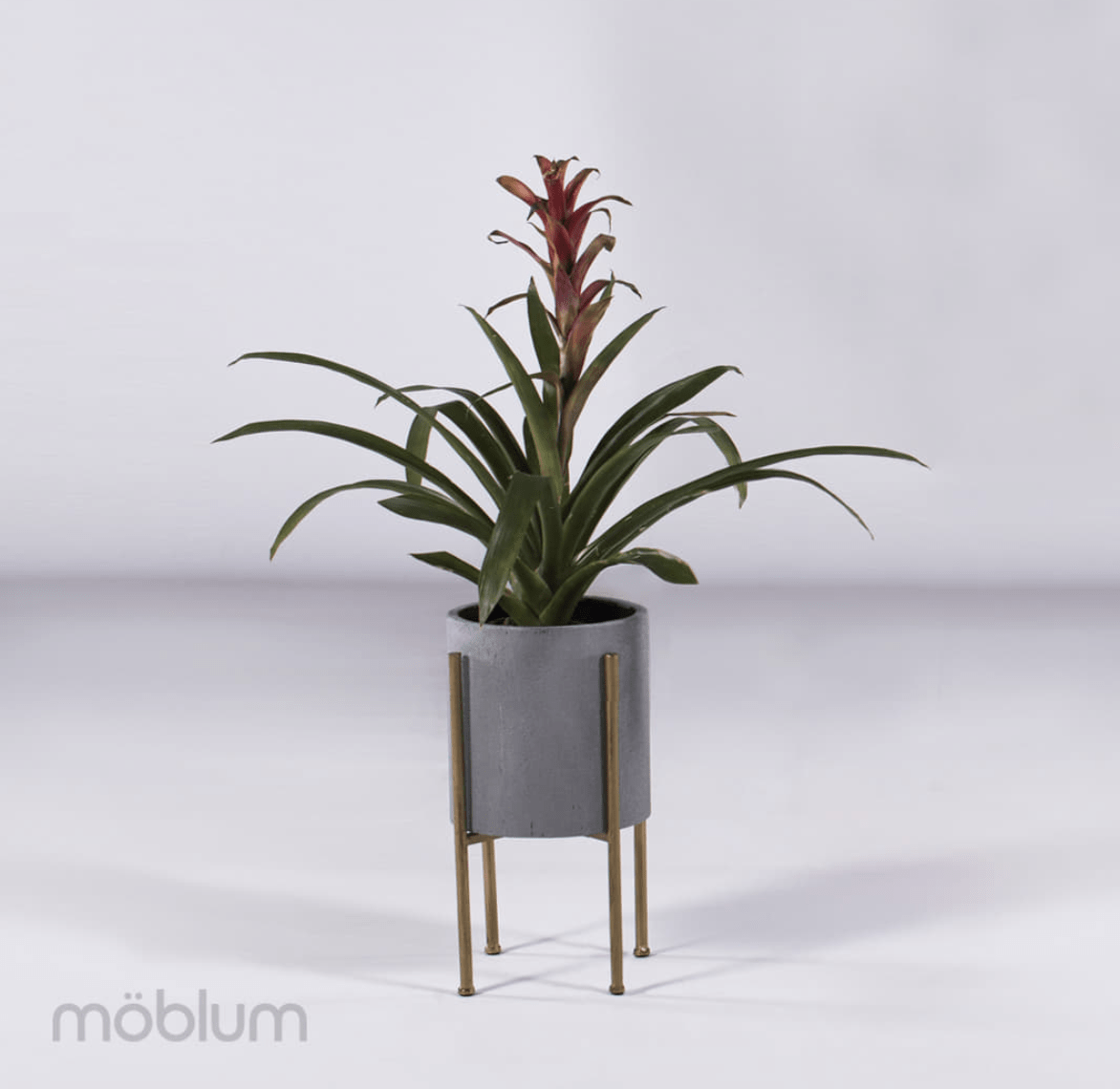 moblum_Tendencias-2019-en-decoracion-de-interiores(4)