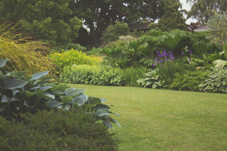 Diseño de jardines para no diseñadores